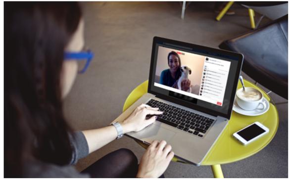 Startup livestream